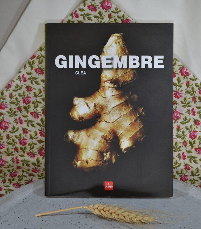 gingembre_on_passe_au_vrac.jpg