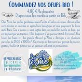C'est nouveau ! Un chouette partenariat local avec Aline de La ferme aux deux parrains à Jeu-les-Bois et ses poulettes bio 🐔 Sur le même principe que les légumes et le pain, commandez la quantité que vous voulez, pour une livraison tous les mardis à partir de 15h ! Pas besoin d'apporter vos boîtes, tout sera livré déjà conditionné. Date limite pour commander : samedi 17h30 ― ― ― ― ― ― Belle journée 🌍 Gwen & Arnaud, vos épiciers 🌿 ― ― ― ― ― ― On passe au vrac É͏p͏i͏c͏e͏r͏i͏e͏ i͏n͏d͏e͏́p͏e͏n͏d͏a͏n͏t͏e͏, de͏p͏u͏i͏s͏ m͏a͏r͏s͏ 2͏0͏1͏9͏ ⏳ Du Mardi au Samedi : 9h - 17h45 ♻️ + de ❶⓿⓿⓿ références 🏡 117 rue nationale • 36400 La Châtre ✆ 02.54.30.96.93 ⏸ Arrêt-minute ♿ Accès PMR 🛒 https://www.onpasseauvrac.fr/ ― ― ― ― ― ― #onpasseauvrac #zerodechet #ecoresponsable #antigaspi #opav #lachatre #berryprovince #centrevaldeloire #sansemballage #commercedeproximite #vrac #vracindependant #consommerautrement