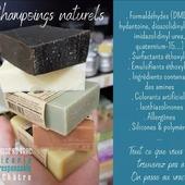 """Bonjour Bonjour 🤗 À l'épicerie nous avons à cœur de choisir des shampoings de qualité ! En prenant le temps de connaître nos savonnières artisanales, en étudiant les compositions, en testant aussi bien sûr ! 𝐋𝐚 𝐟𝐚𝐛𝐫𝐢𝐜𝐚𝐭𝐢𝐨𝐧 𝐞𝐬𝐭 𝐚𝐫𝐭𝐢𝐬𝐚𝐧𝐚𝐥𝐞, 𝐞𝐧 𝐅𝐫𝐚𝐧𝐜𝐞, 𝐩𝐚𝐫 𝐝𝐞𝐬 𝐬𝐚𝐯𝐨𝐧𝐧𝐢𝐞̀𝐫𝐞𝐬 𝐜𝐞𝐫𝐭𝐢𝐟𝐢𝐞́𝐞𝐬 𝐍𝐚𝐭𝐮𝐫𝐞 & 𝐏𝐫𝐨𝐠𝐫𝐞̀𝐬 𝐪𝐮𝐢 𝐦𝐞𝐭𝐭𝐞𝐧𝐭 𝐭𝐨𝐮𝐭 𝐥𝐞𝐮𝐫 𝐬𝐚𝐯𝐨𝐢𝐫-𝐟𝐚𝐢𝐫𝐞 𝐩𝐨𝐮𝐫 𝐧𝐨𝐮𝐬 𝐜𝐡𝐨𝐮𝐜𝐡𝐨𝐮𝐭𝐞𝐫 ! On vous les (re)présente :  ▶️ Emily Savonnerie la Brique, avec son Bac+5 puis Doctorat en Neurosciences spécialité Biochimie, dans son atelier à Nîmes elle garde une éthique écologique et respectueuse de l'environnement assez poussée au quotidien. Emily est capable de modifier une recette pour nous éviter un contact avec un ingrédient polluant (cf le shampoing d'Emily, auquel elle a remplacé le rassoul - argile souvent contaminée par des métaux lourds qui peuvent se retrouver sur nos cheveux - par la poudre de Brahmi - issue d'une plante grasse indienne, réputée en Ayurvéda pour son action tonique et revitalisante). La devise d'Emily : """" N'oubliez pas, le savon, c'est la vie ! Tous à la douche ! """" ▶️ & Nathalie, Savonnerie Buissonnière à Capdenac le Haut dans le Lot. Certifiée depuis 2015 Nature & Progrès et depuis 2017 lauréate Slow Cosmétique. Utilisation également de la technique de la saponification à froid. Totalement artisanale et respectueuse des matières premières biologiques, cette méthode qui ne nécessite pas de cuisson, permet d'obtenir des savons surgras (ajout d'huile végétale en fin de processus), riches en glycérine hydratante, très doux pour la peau et totalement biodégradables.  Nos prix : de 4,90€ le pain de 50g à 5,40€ le pain de 100g. Chaque pain peut durer en moyenne 1 mois et demi voire 2 mois si vous avez les cheveux courts. On peut dire adieu aux produits industriels, non ?!...   À nouveau merci de nous lire ! Certaines explications méritent d'être détaillées 😉😄 ― ― ― ― ― ― Gwen & Arnaud, vos épiciers 🌿 #onpasseauvrac #zerodechet"""